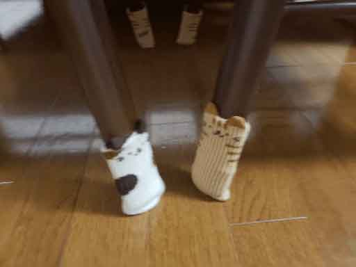 フクフクニャンコ ねこの顔デザインな椅子の靴下【チェアソックス】