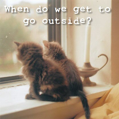 when do we get to go outside