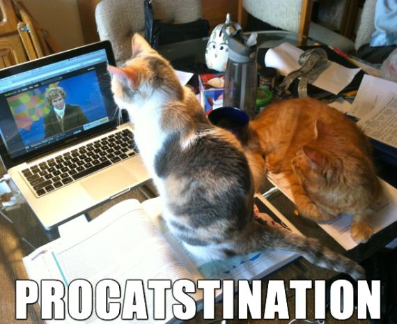 procatsination