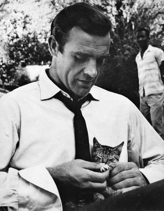 connery dr no cat