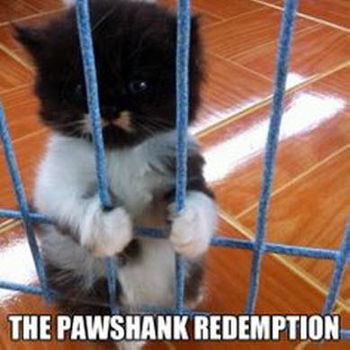 pawshank