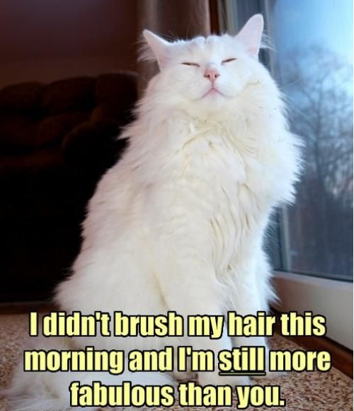 fabulous no brushing
