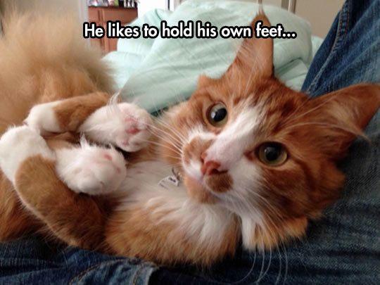 hold own feet