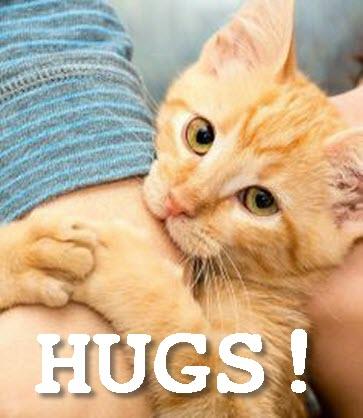 GINGER HUG