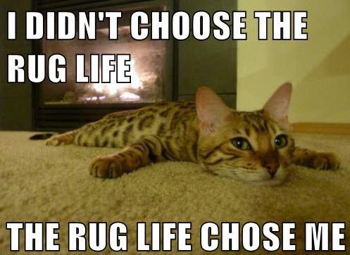 rug life