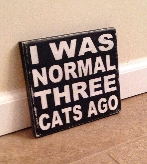 normal 3 cats ago