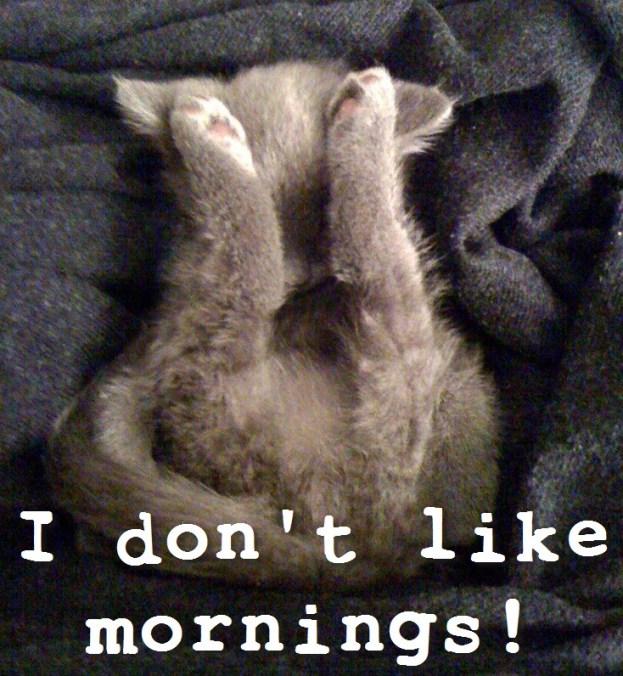 I don't like mornings
