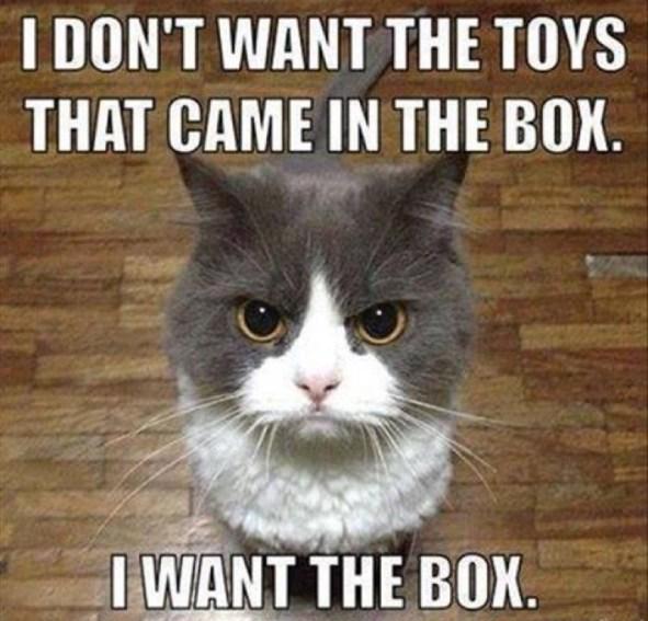 want the box lol