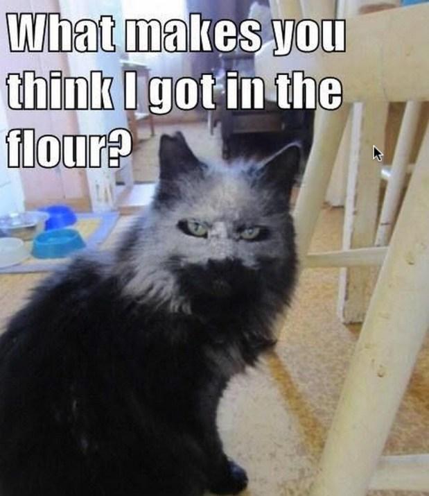 flour lol