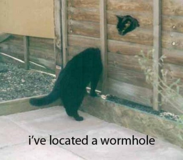 wormhole lol