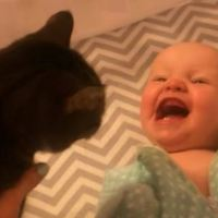 Baby is So Excited to See Kitty!