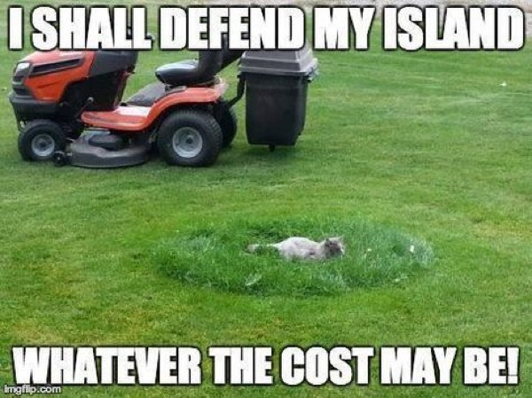 defend island lol