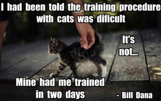 training LOL