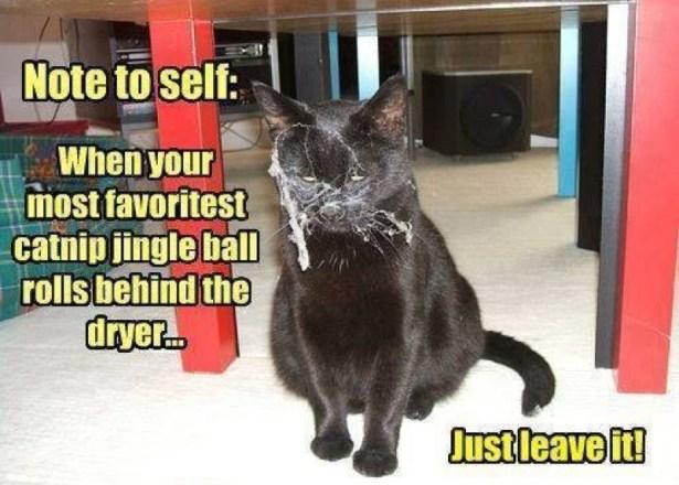 jingle ball lol