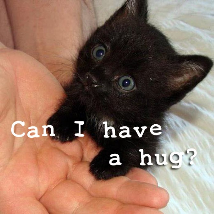 can i have a hug