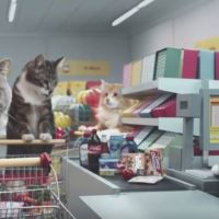 Wacky German Advert Features Cats Pushing Trolleys Around a Supermarket