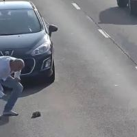 Man Stops His Car on Busy Road to Save a Kitten's Life