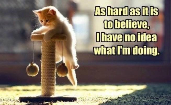 hard-to-believe-lol