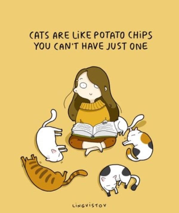like-potato-chips