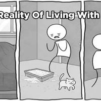 12 Hilarious Comics That Reveal The Reality Of Living With Cats