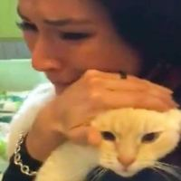 Woman Finds Missing Cat After Searching For Two Years