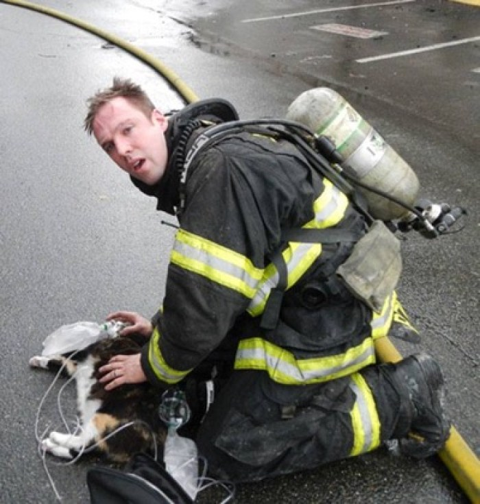 firefighters 12