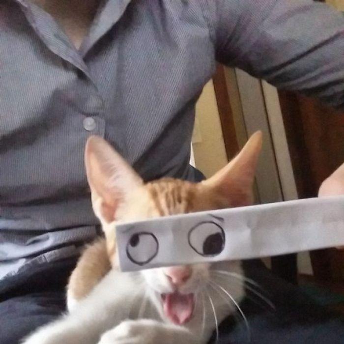 funny-eyes-11
