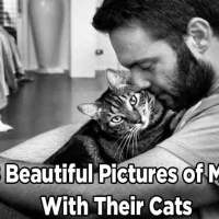18 Beautiful Pictures of Men With Their Cats