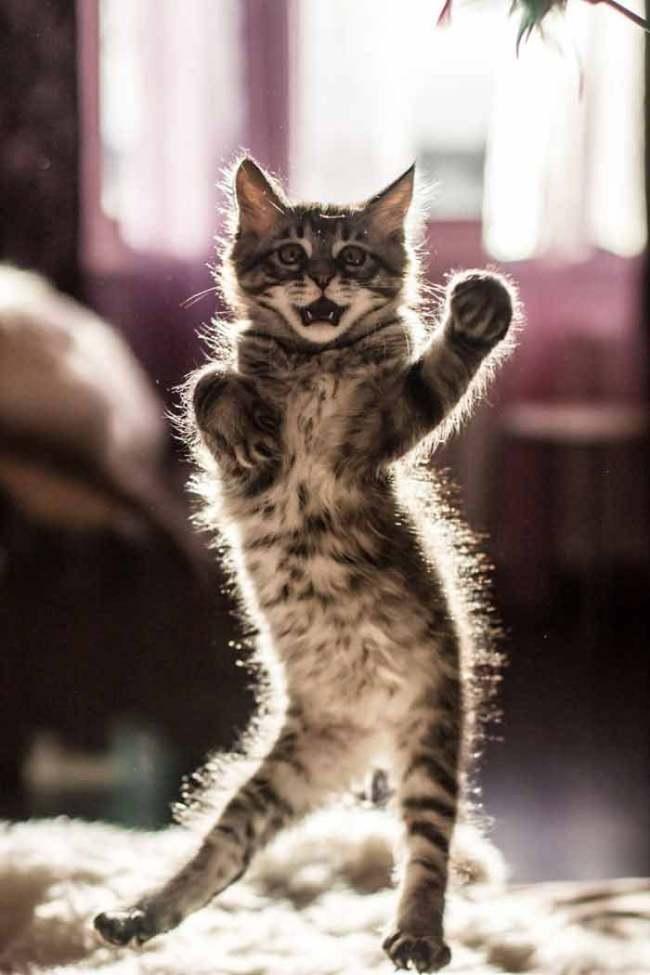 dancing-3