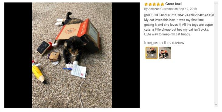meowbox coupon code