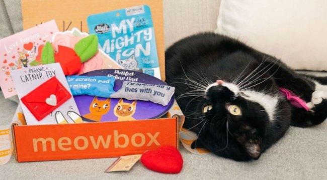 meowbox promo codes