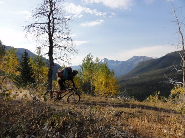 Further along Gun Creek trail