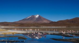 Flamingoes and volcanoes