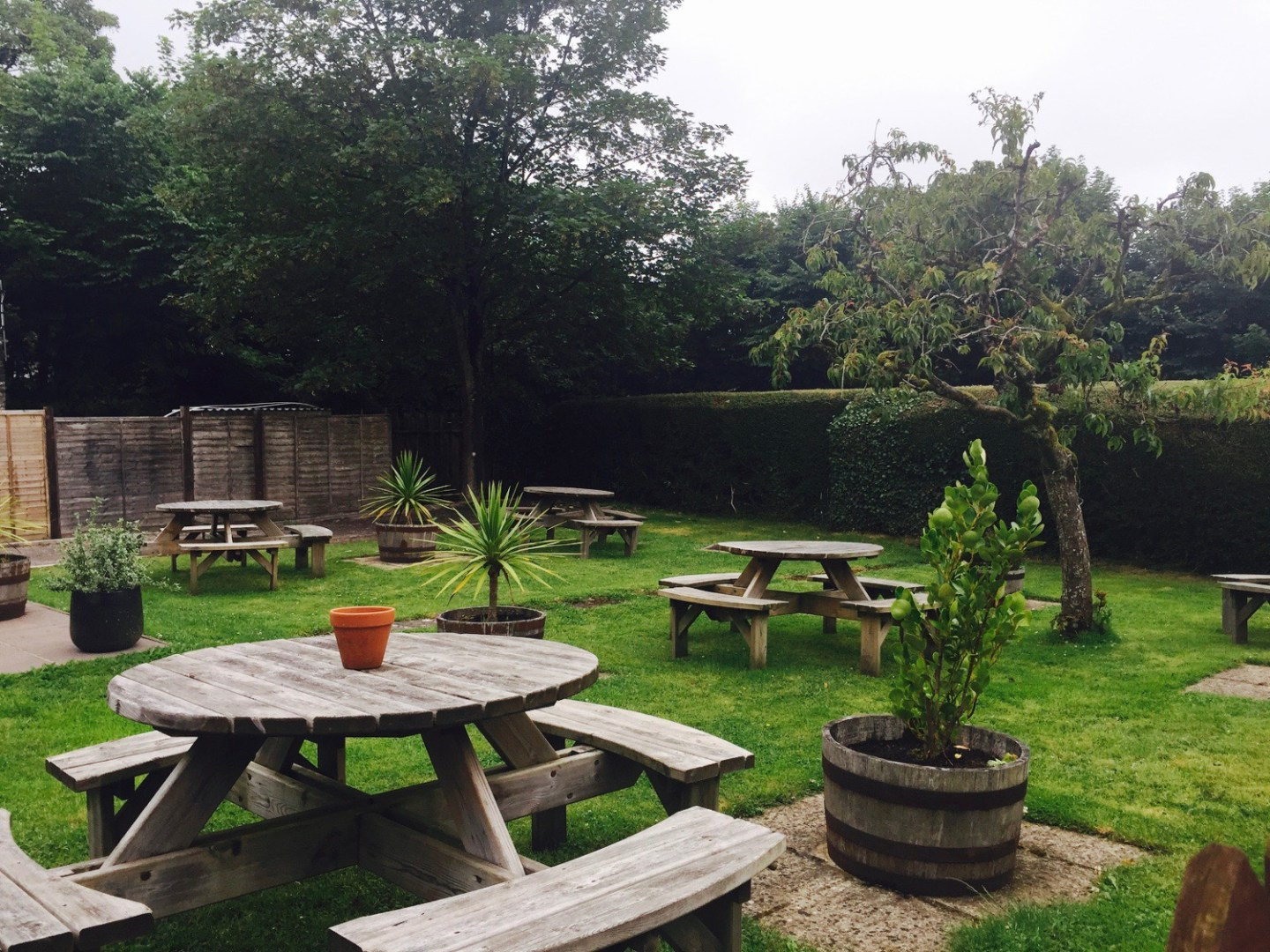 The Bush Inn Beer Garden