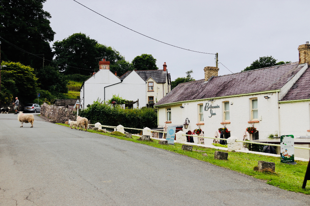 Britannia Inn - Gower Peninsular