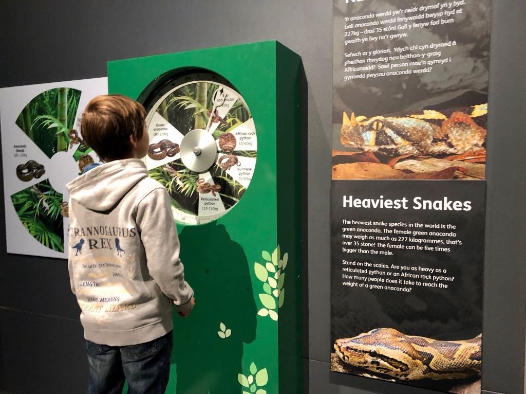 Snakes Exhibition at the National Museum Cardiff - 9