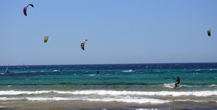 Surfer Rimini