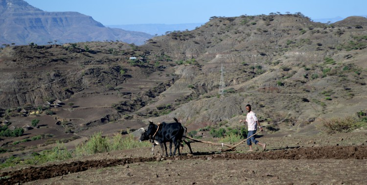 Bauer Äthiopien
