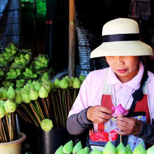 thailand-1563571_1920-500x500