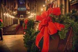 Auf der Sri Lanka schmückt man eine Zypresse als Weihnachtsbaum in den Kirchen