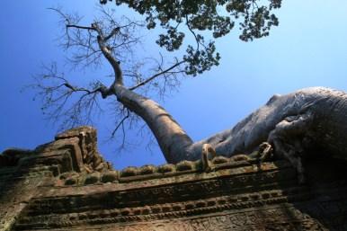 Kambodscha (16 von 50)