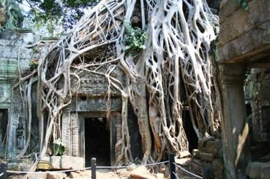 Kambodscha (32 von 50)