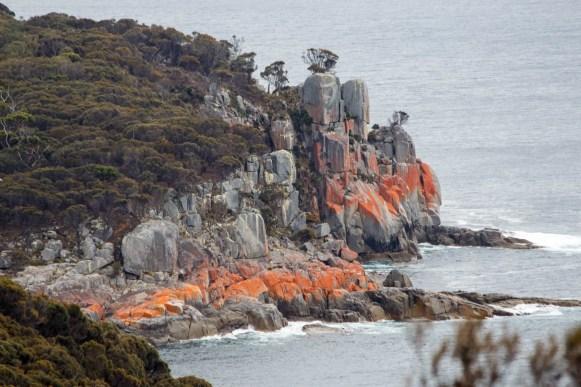 Red granite in the Freycenet National Park