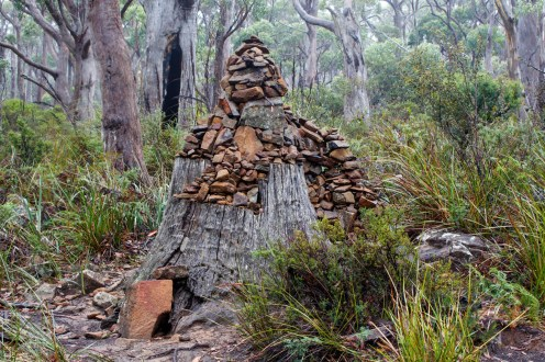 Forest shrine at Cape Raoul