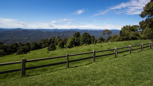 View near Dorrigo