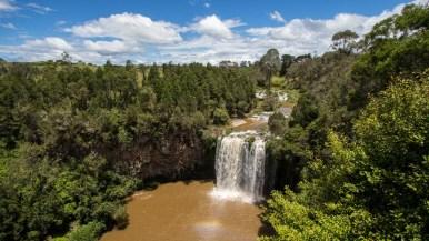 Dangar Falls at Dorrigo