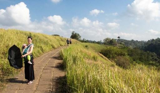 Hike around Ubud