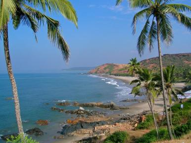 Palmenidylle in Goa
