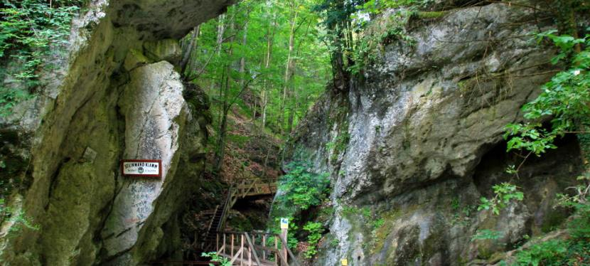 Wanderung durch die Steinwandklamm