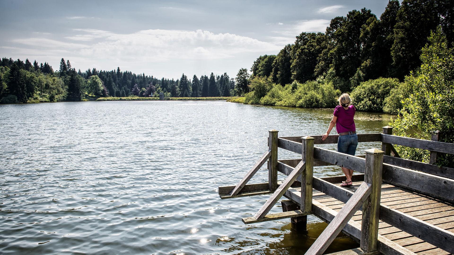 Hahnenklee_Hahnenklee_Tourismus_Marketing_Gmbh_Fotograf_Stefan_Schiefer-Oberharzer-Wasserwirtschaft_web